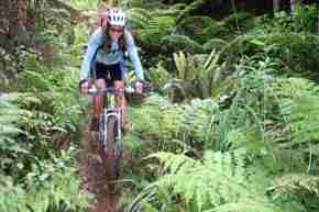 Real Mountain bike tours 2